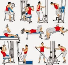 ejercicios con pesas 4 días a la semana