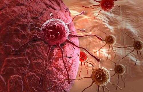 Curcumina para el cancer